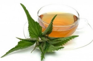 Efectele ceaiului de urzici