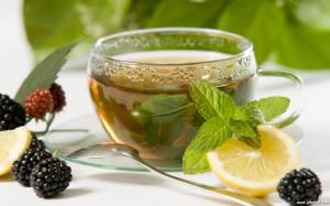 Viata sanatoasa - antioxidanti - ceai verde si fructe de padure